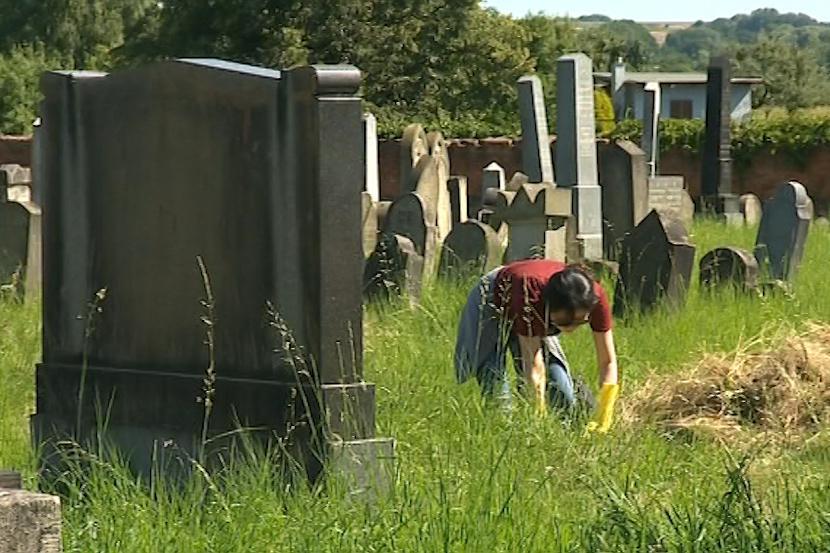 Dobrovolníci zvelebují židovský hřbitov v Holešově