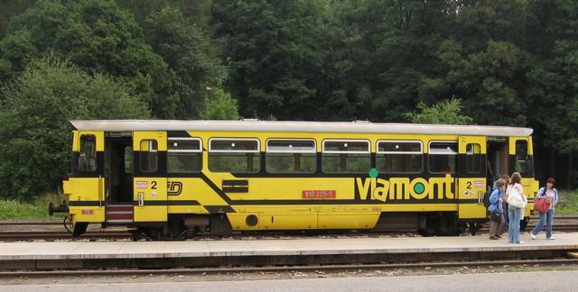 Vlak Viamontu