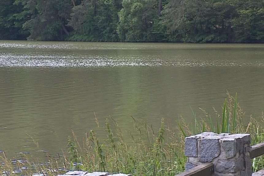 Rybník Olšovec má horší kvalitu vody