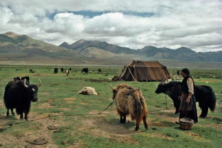 Tradiční způsob života Tibeťanů