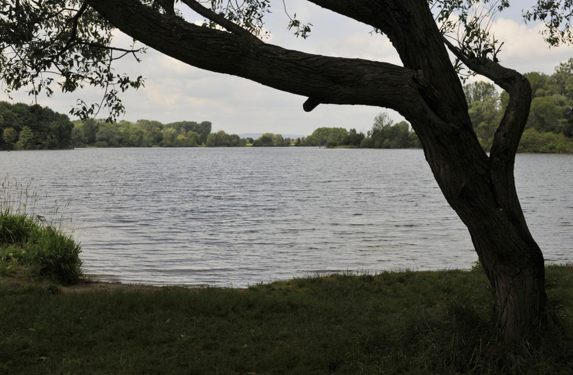 Přírodné jezera Poděbrady