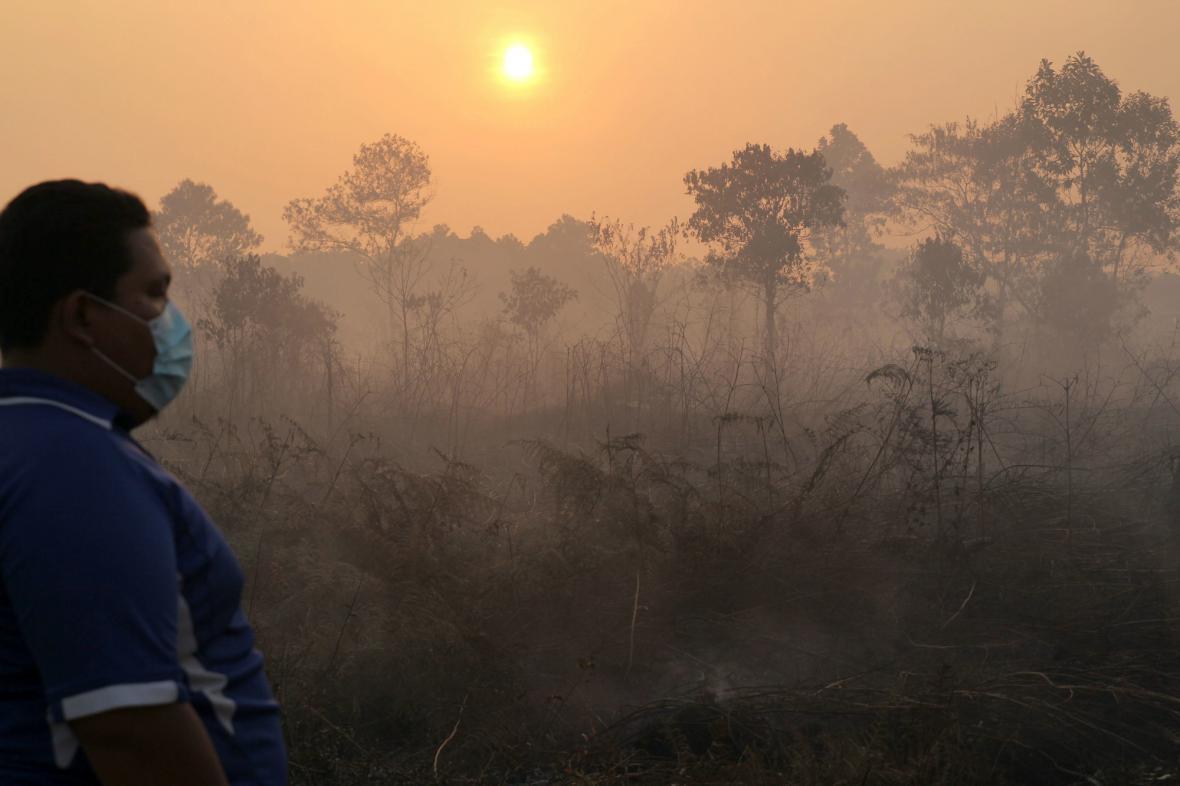 Vypalování lesů způsobilo smogovou pohromu v Singapuru
