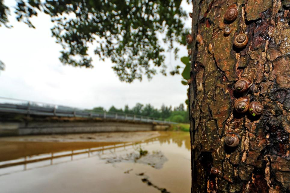 Povodně na Vysočině