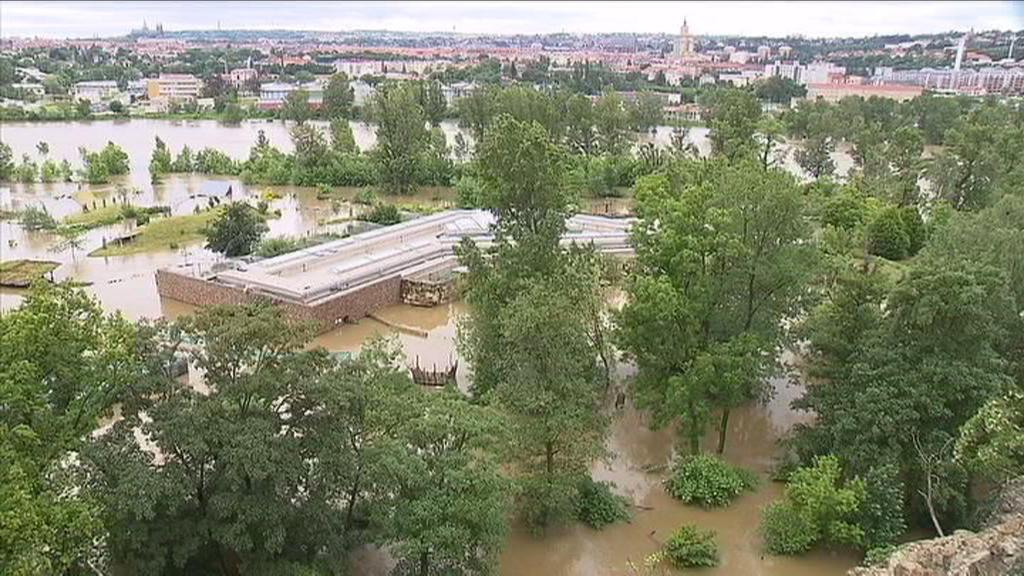 Zatopená pražská ZOO