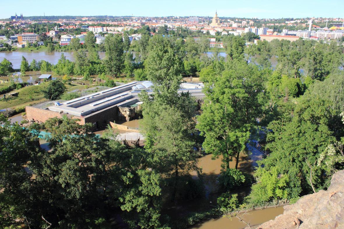 Zatopená část pražské zoo 5.6.2013