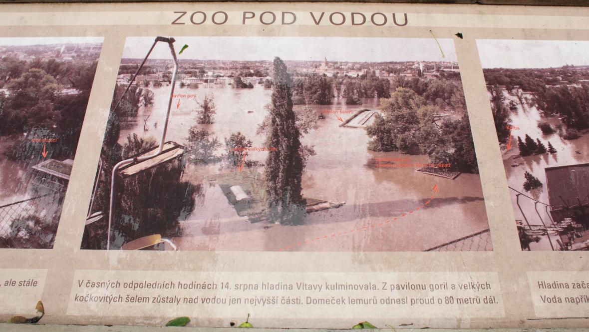 Fotografie zatopené pražské zoo v roce 2002