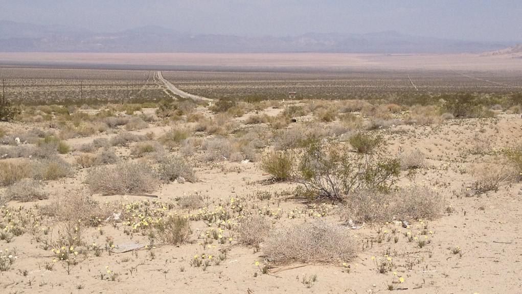 Coloradská poušť v jižní Kalifornii