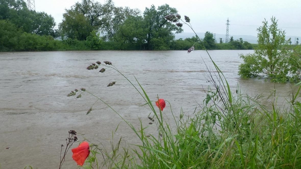 Cyklostezka Radotín - Černošice, Berounka se uz vylévá z koryta