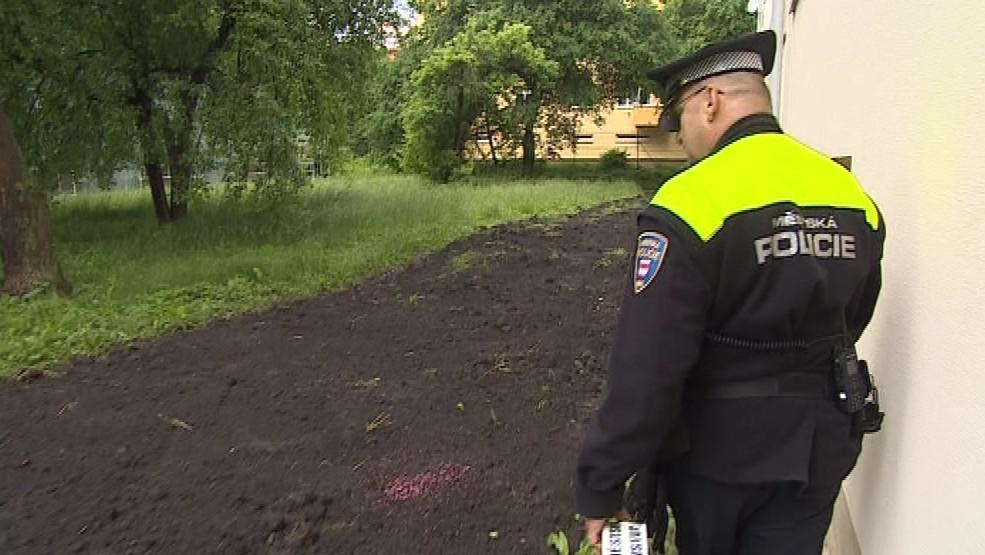 Majitel přiotráveného psa na místo zavolal strážníky