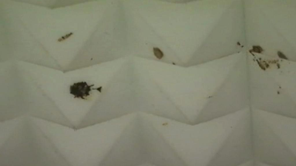 Skvrny od výkalů na stropě guantánamských chodeb