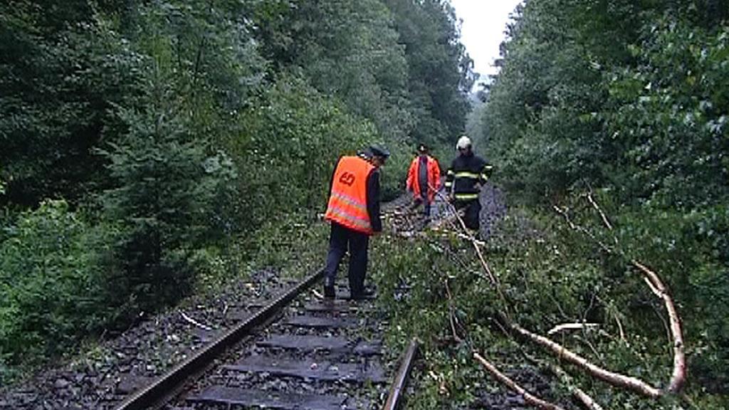 Spadlý strom na kolejích