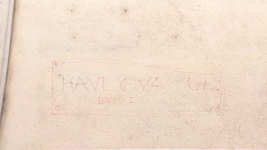 Havla na zdi připomíná vybledlý nápis fixou