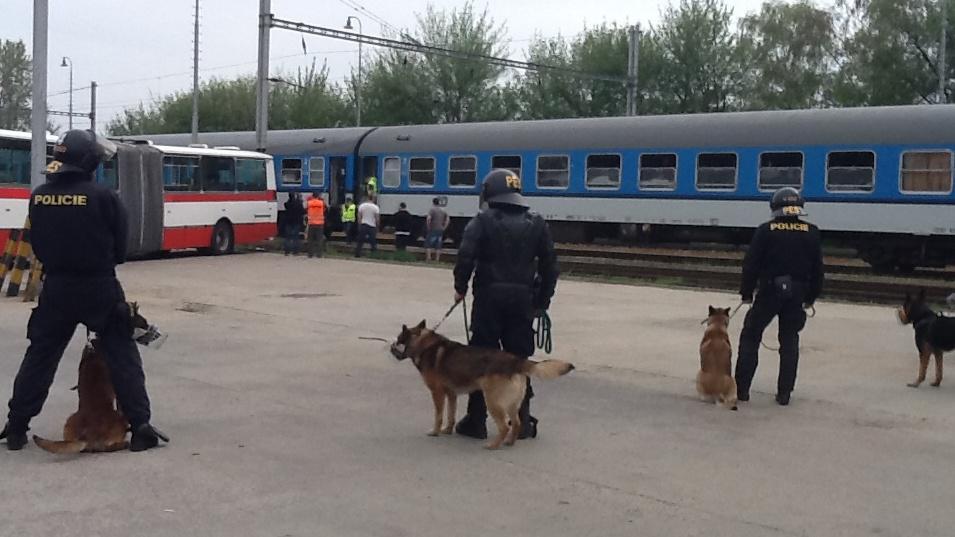Policisté se psy dohlížejí na příjezd fanoušků Baníku na nádraží v brněnské Slatině