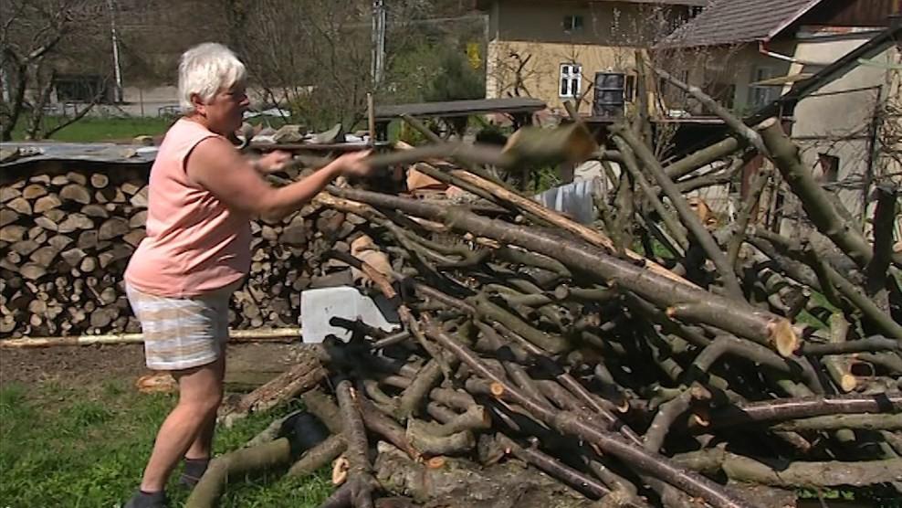 Loni platila za dřevo o deset tisíc méně
