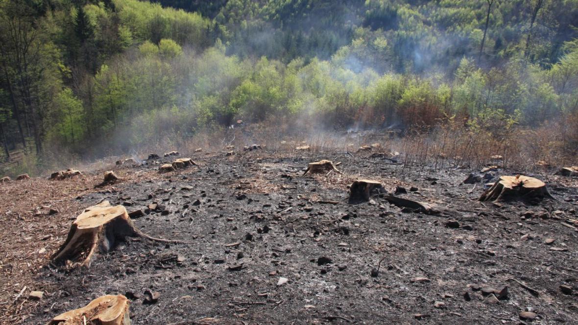 Požár způsobil škodu asi za 50 tisíc korun