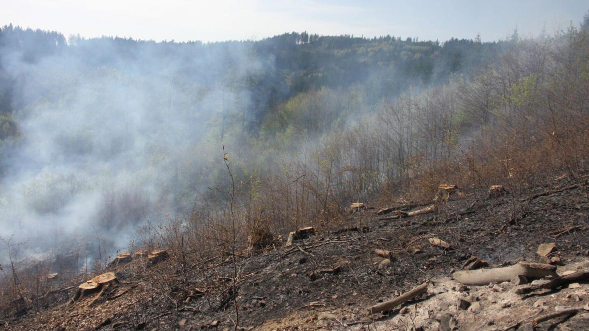 Spáleniště po požáru nedaleko Návojné