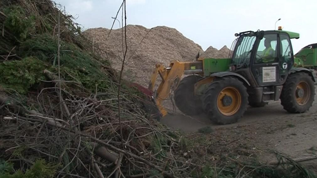 Tady končí především odpad z údržby městské zeleně