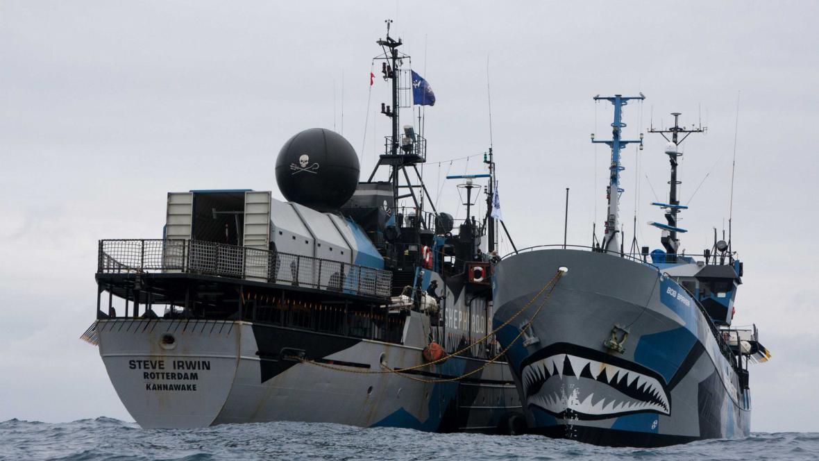 Plavidla organizace Sea Shepherd