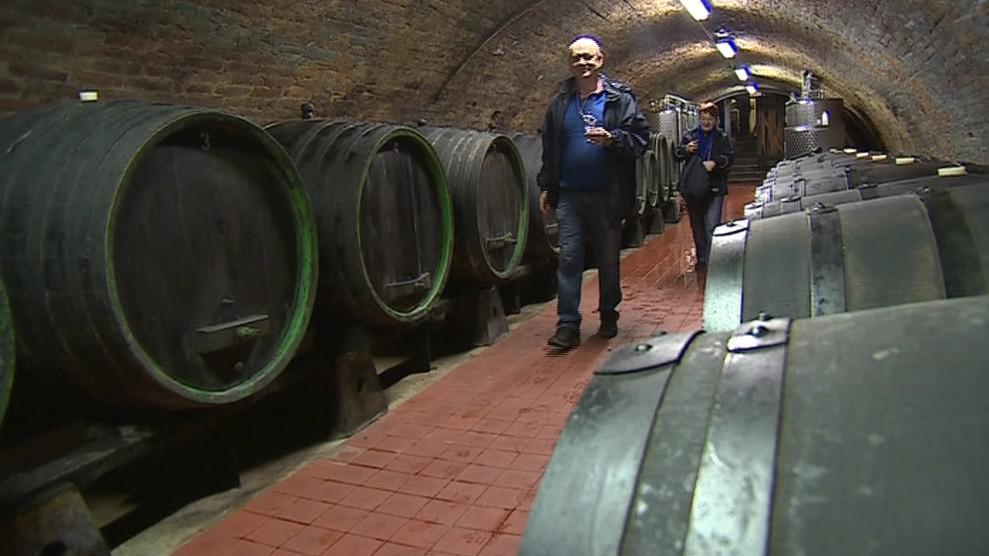 Vinařský sklep v Dolních Dunajovicích
