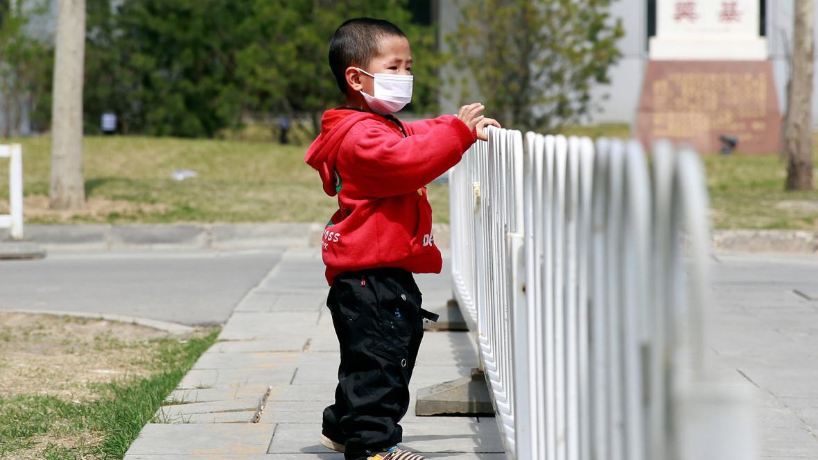 Čína bojuje s ptačí chřipkou