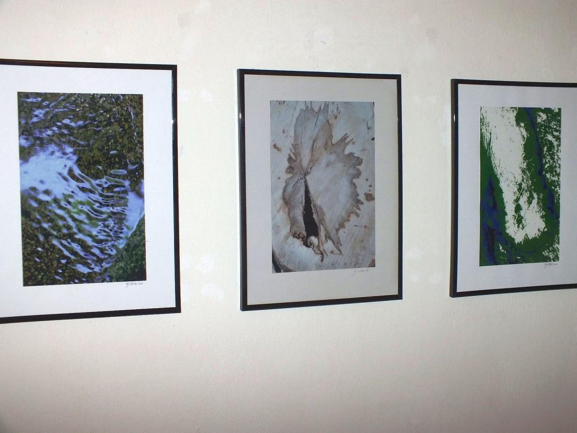 Z výstavy Imaginace a motivy z lesa