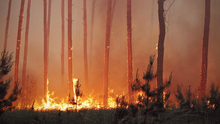 Loňský požár v Bzenci