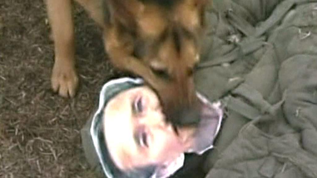 Severokorejský pes trhá figurínu s podobiznou Kim Kwan-čina