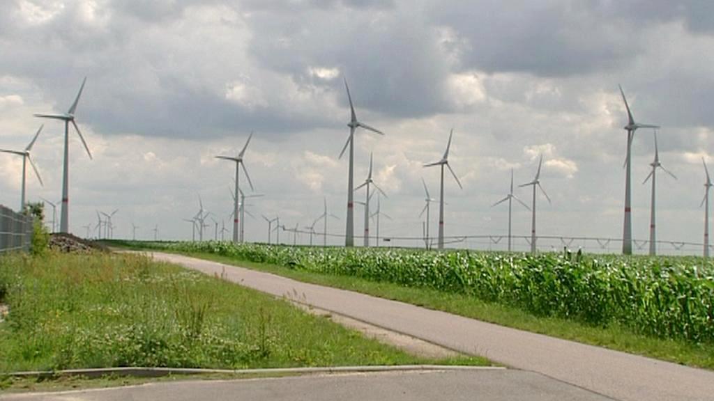 Větrníky v okolí Feldheimu