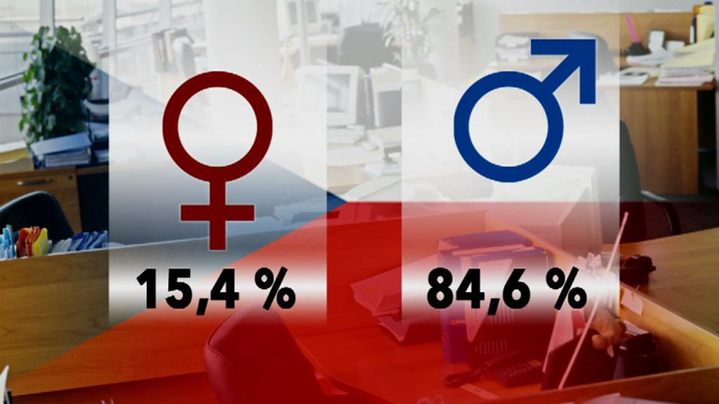 Zastoupení žen ve vrcholových pozicích v ČR