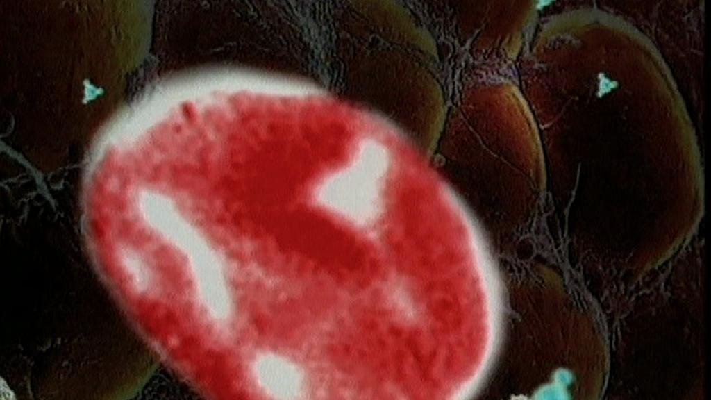 Číštění vody pomocí nanovláken
