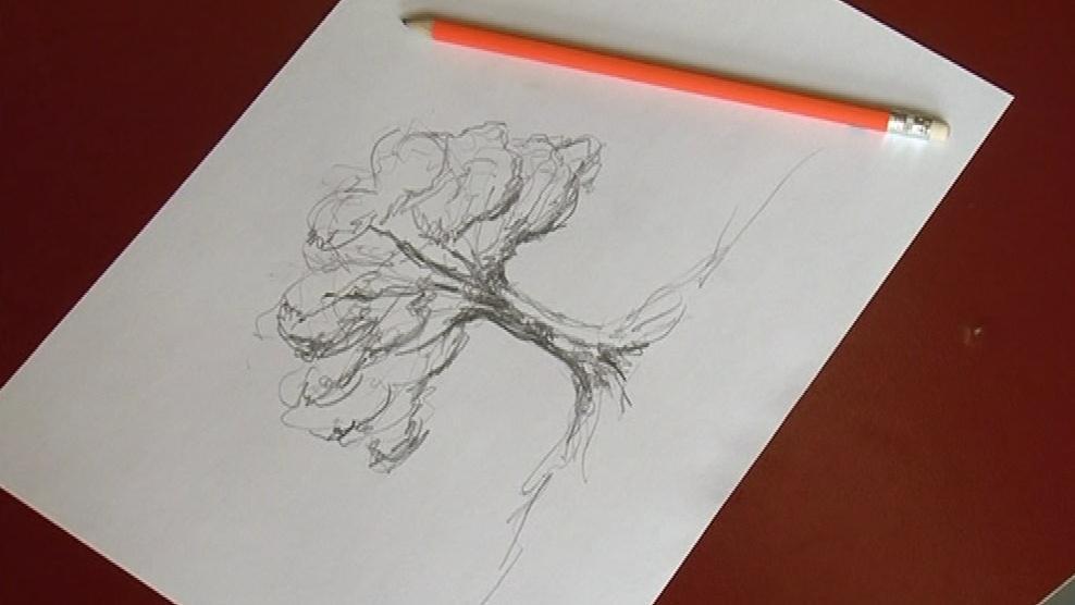Za 20 korun vyroste v Kamerunu 1 strom