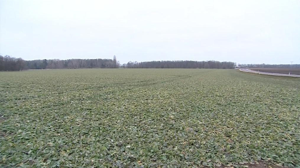 Sucho poškodilo zemědělce před tři čtvrtě rokem