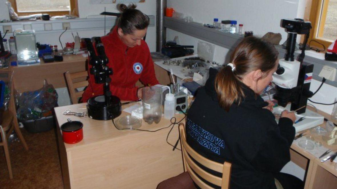 Parazitoložky zkoumají vzorky v improvizované laboratoři