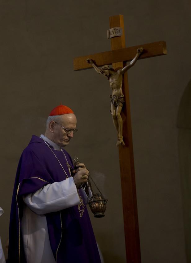 Kardinál Peter Erdo