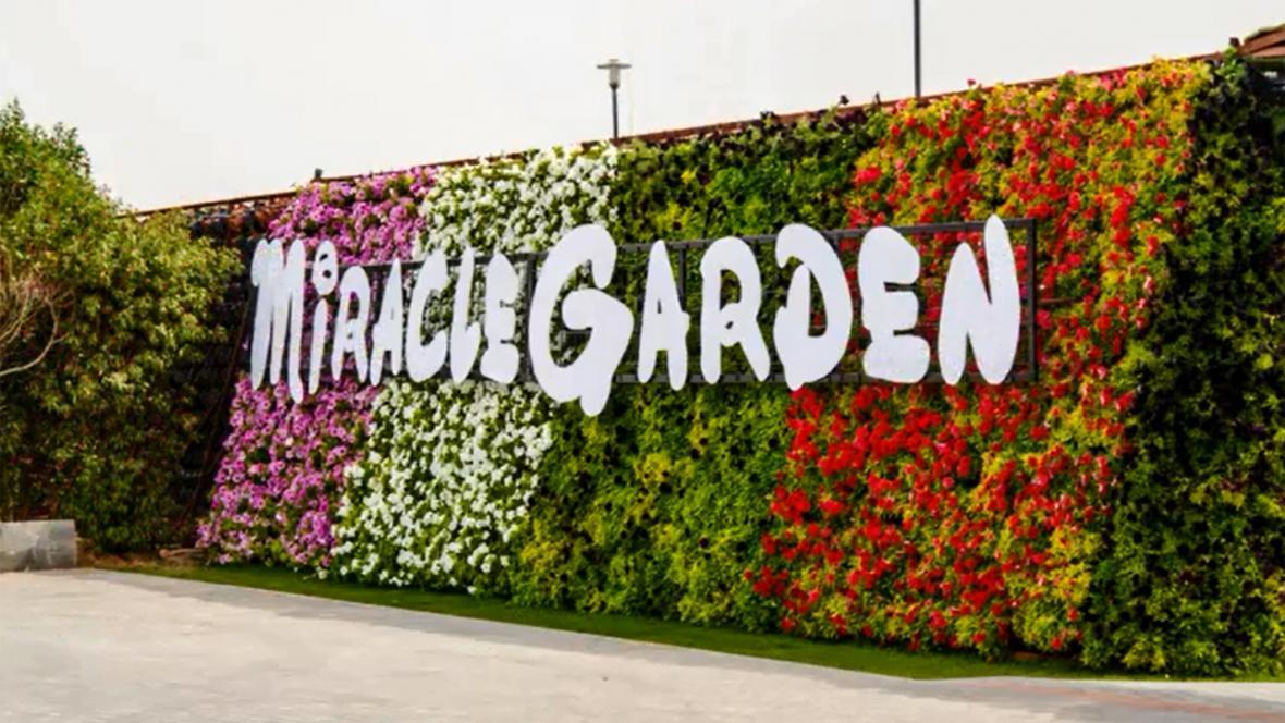 Zázračná zahrada v Dubaji