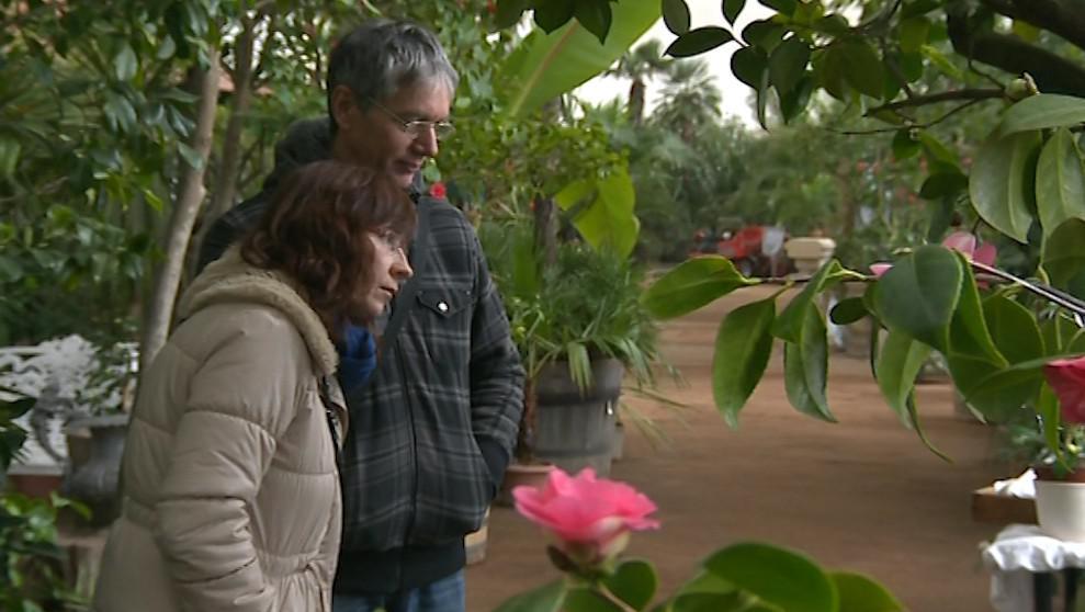 Zájemci si mohou květiny na výstavě také zakoupit