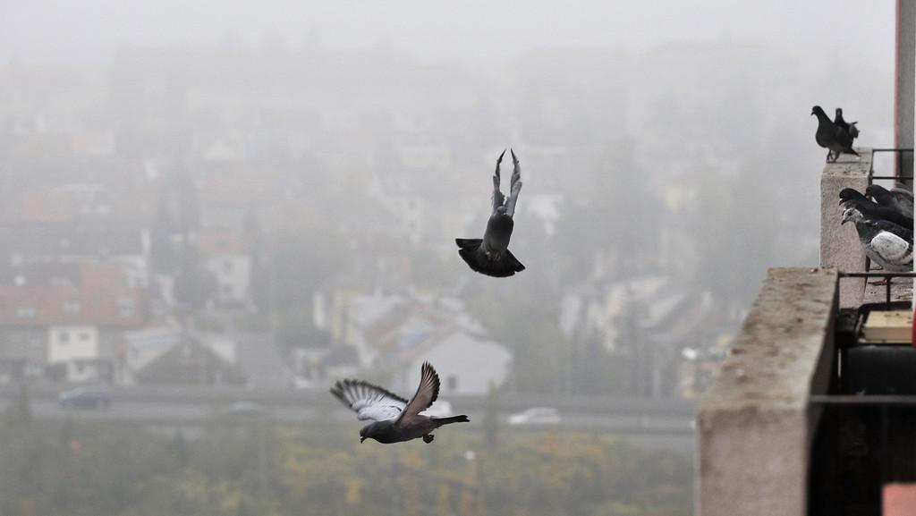 Inverzní počasí v Praze