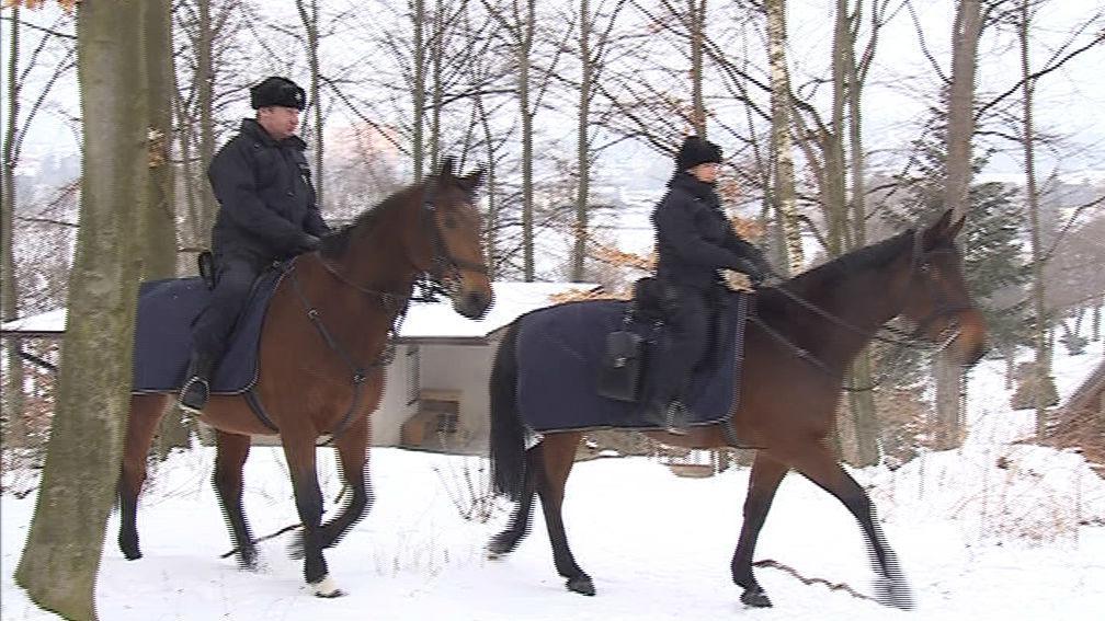 Jízdní policie kontroluje chaty v Jedovnicích