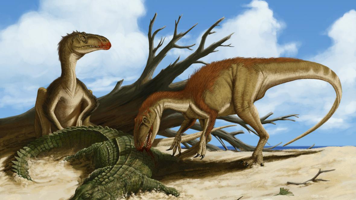 Rekonstrukce vzhledu moravského teropoda