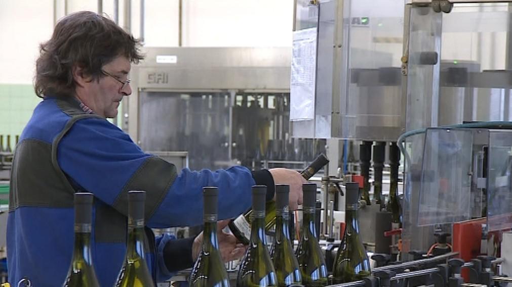Cenu za nejlepší kolekci získalo Zámecké vinařství Bzenec