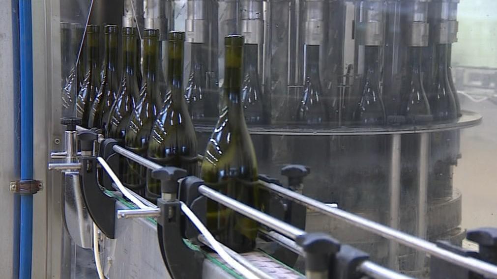 Bzenecké vinařství má letos v soutěži osm bílých vín