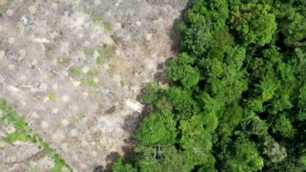 Záběr z monitorovacího letadla švýcarských ekologů