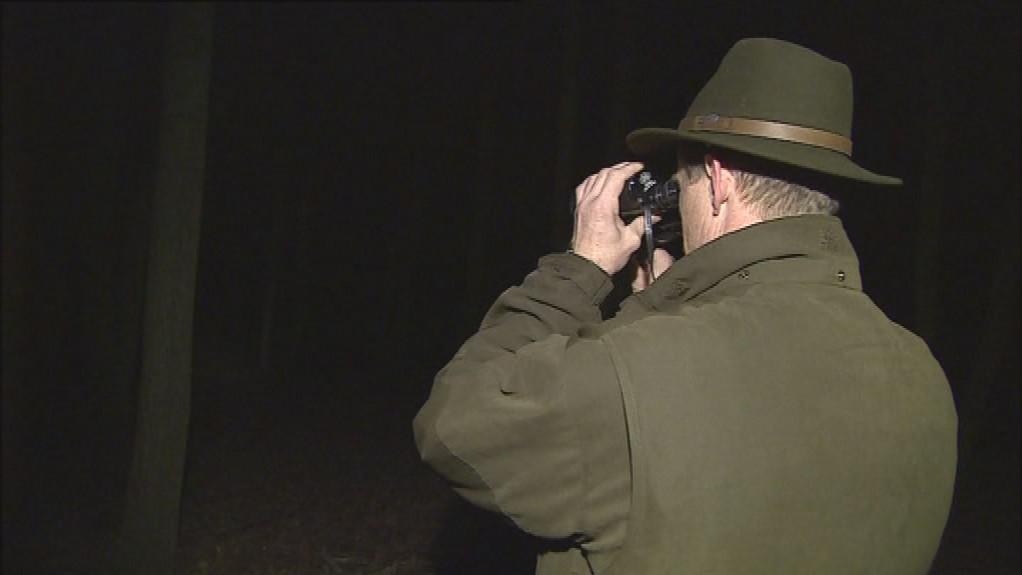 Lesníci chodí oboru v noci hlídat
