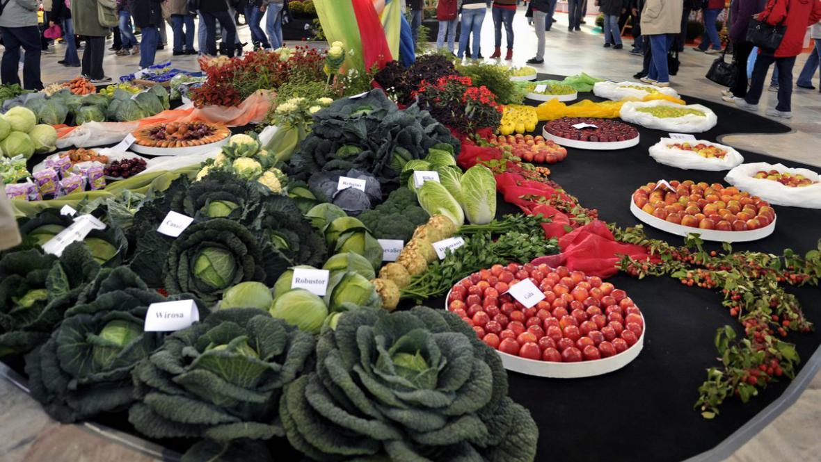 Olomoucké výstaviště zaplnila zelenina a ovoce