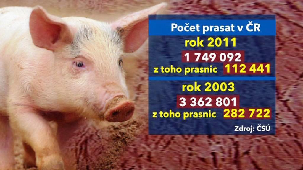 Porovnání počtu prasat v ČR