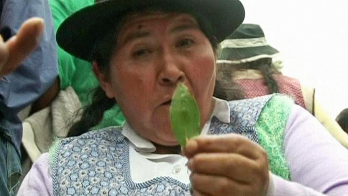 Bolivijská demonstrantka s lístkem koky