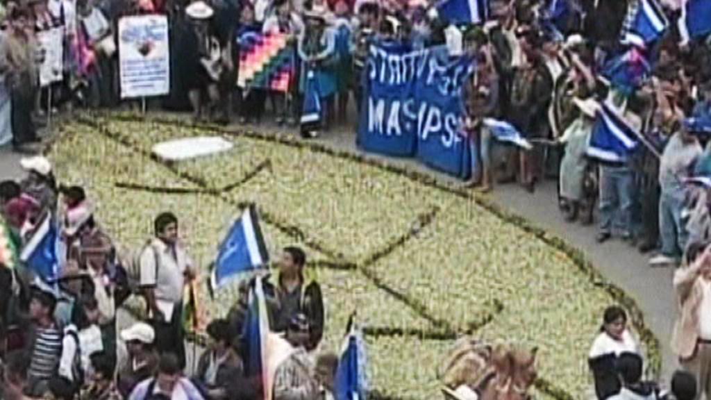 Bolivijci slaví povolení žvýkání koky