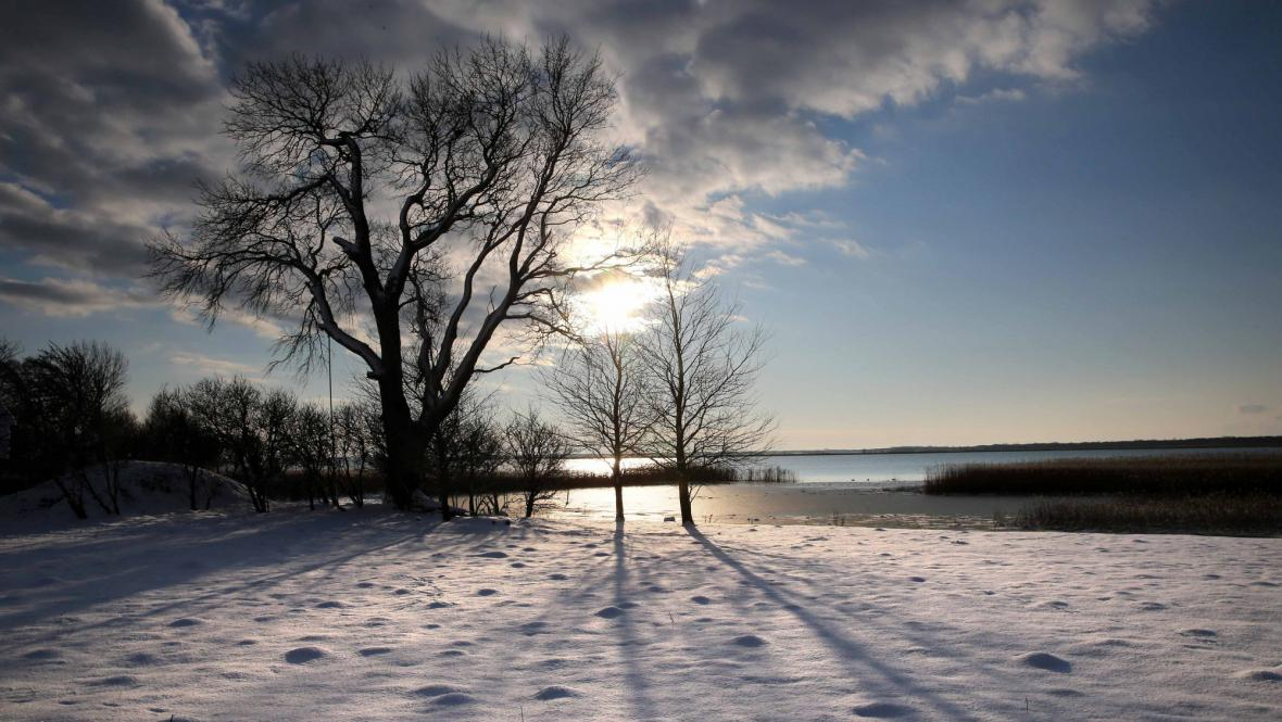 Zimní krajina