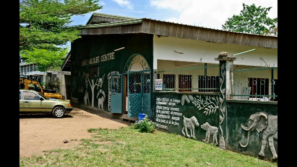 Záchranné centrum pro primáty v Limbe