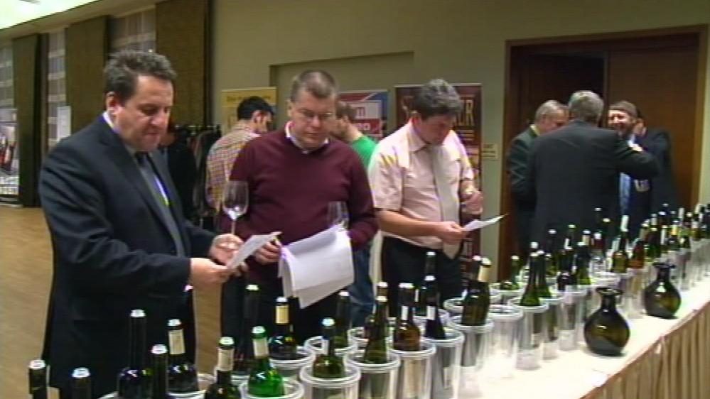O letošním vítězi Salonu vín se rozhodovalo v Mikulově